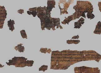 Ancient DNA uncovers Dead Sea Scrolls mystery