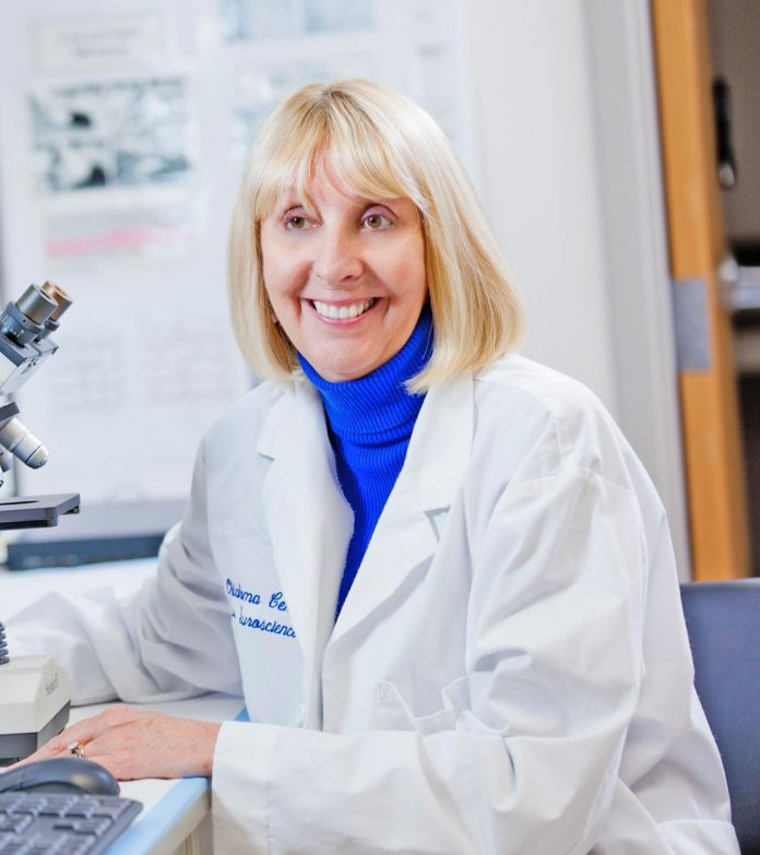 Researcher earns federal grant to study stress-induced irritable bowel syndrome