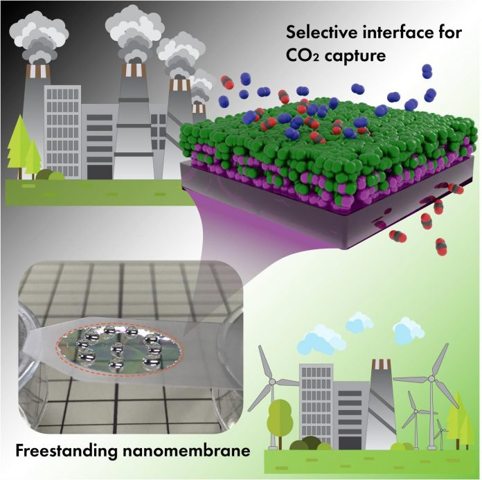 Molecularly thin interface between polymers -- for efficient CO2 capture membrane