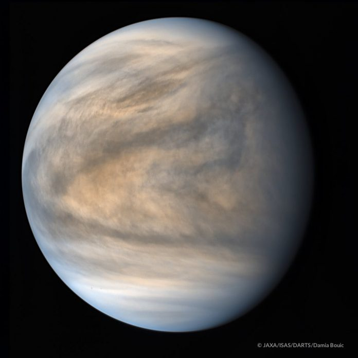 Could there be life on Venus? Paul Davies considers the possibilities