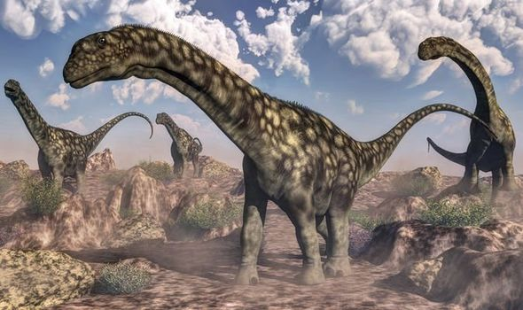 Dinosaur fossil found in Argentina may be largest land animal ever