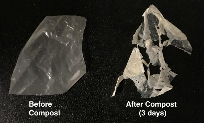 New process makes 'biodegradable' plastics truly compostable (Study)