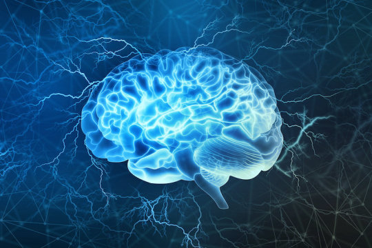 Research finds brain areas involved in seeking information about bad possibilities
