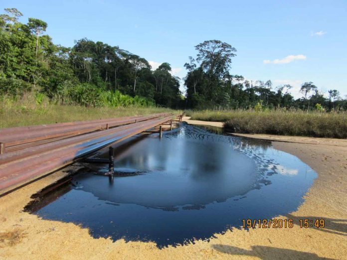 Research finds high levels of lead in indigenous people in Peruvian Amazonia