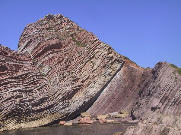 Research: Extreme volcanism did not cause the massive extinction of species in the late Cretaceous